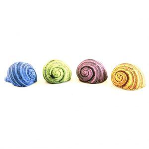 Deodoriser Shells